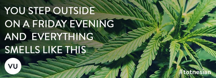 weed-website-banners